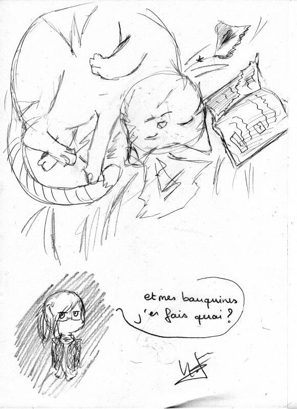 http://lancelot.cowblog.fr/images/stripbicounou2.jpg